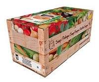 Knorr 100% Thai Vegetable Soup 2,4L -